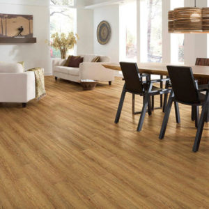 Alexandria Oak US Floors CORETec Plus LVT Vinyl Floating P